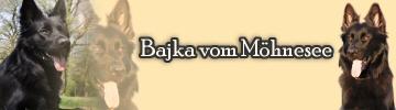 Banner Bajka